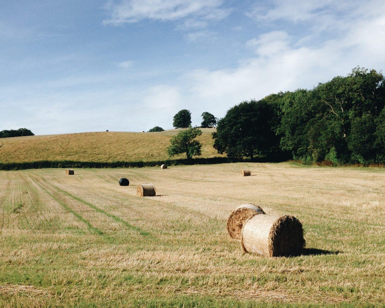 The British Summertime