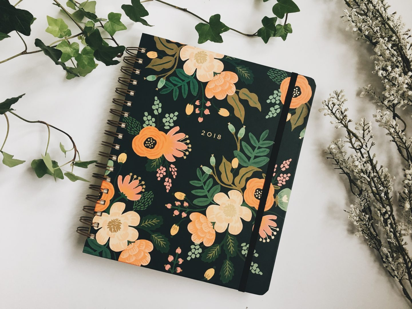 The Best Planner for 2018
