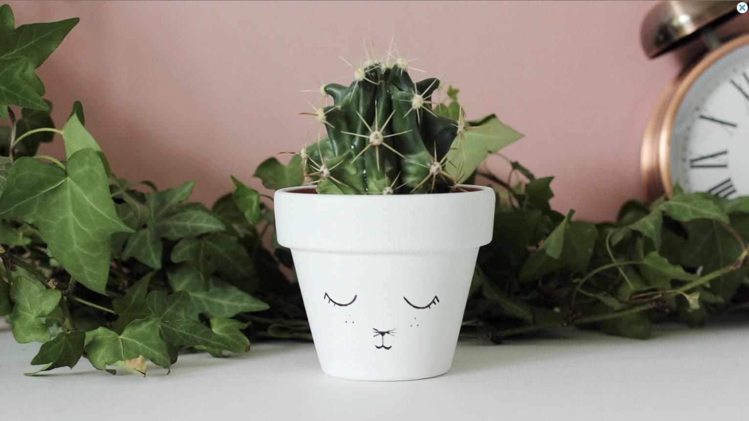 Adorable-Cat-Plant-Pot