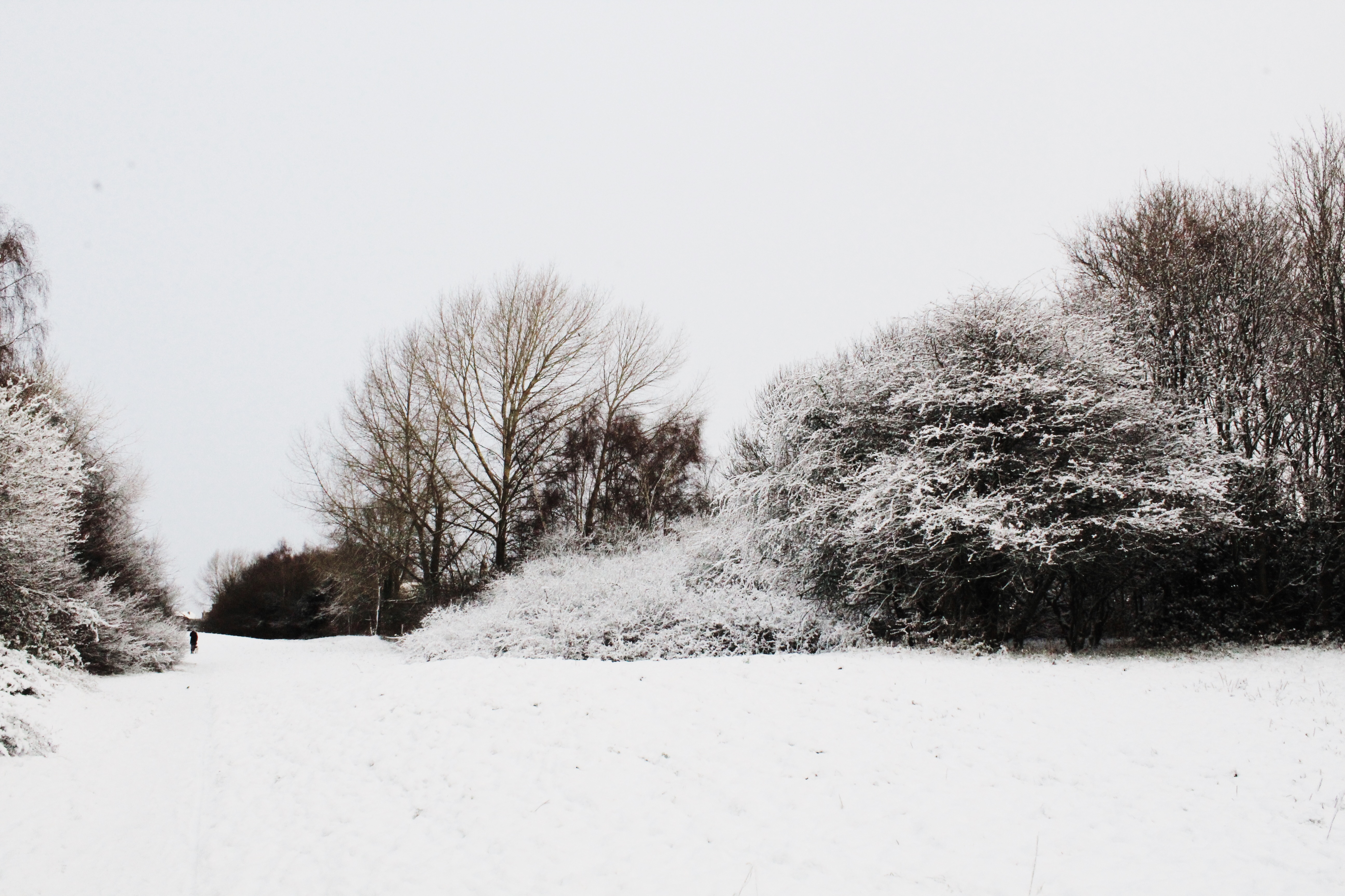 Snow In England