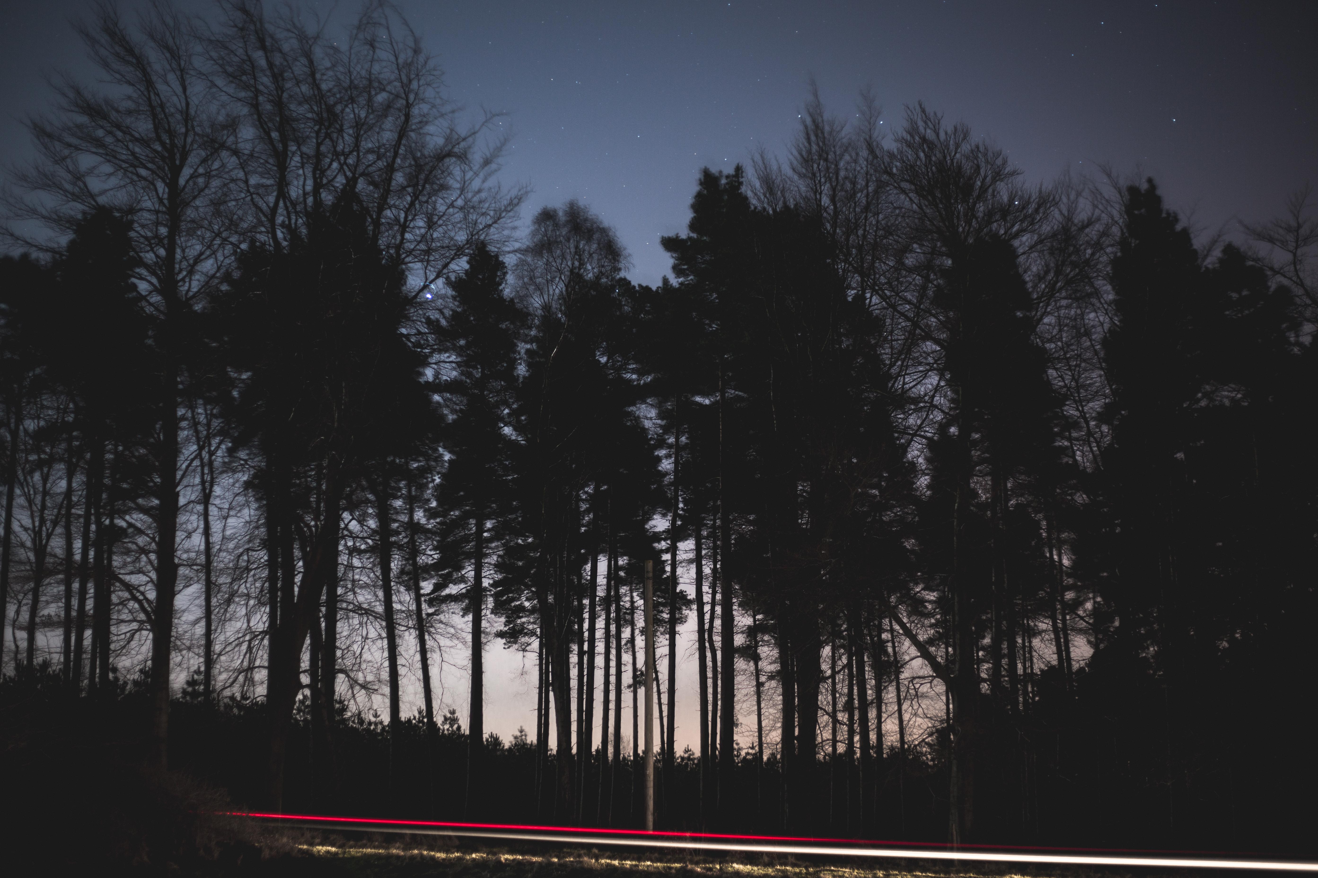 Night-Sky-Photography-2.jpg