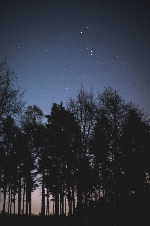 Night-Sky-Photography-9.jpg