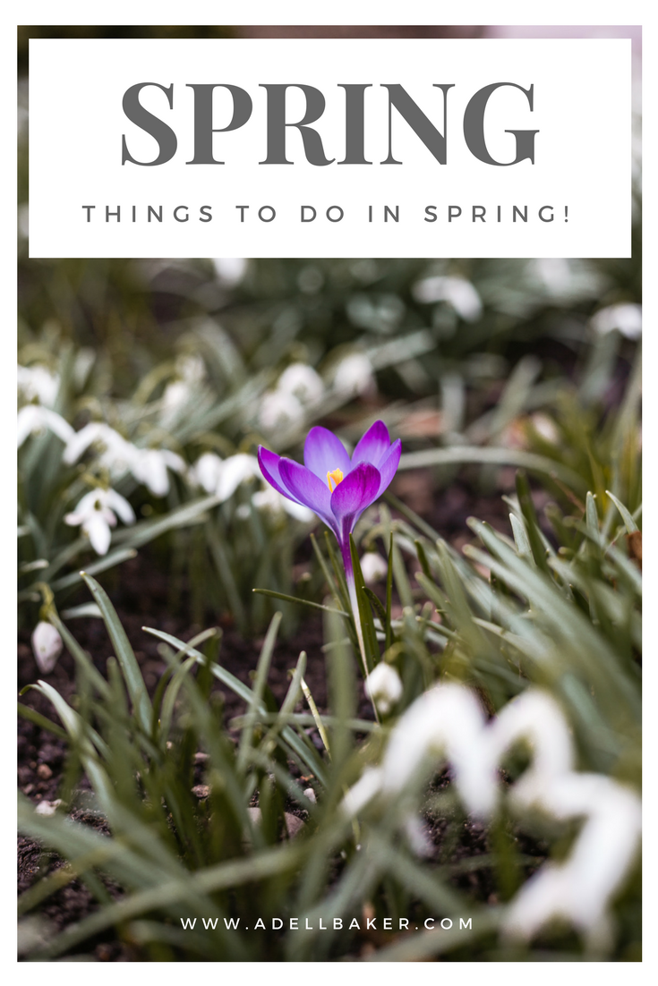 Things-to-do-in-spring.png